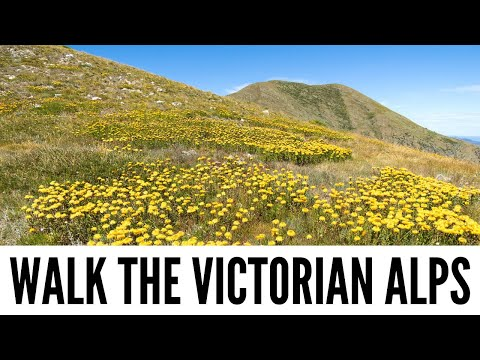 Tips for Walking the Victorian Alps, Regional Victoria - Tour the World TV