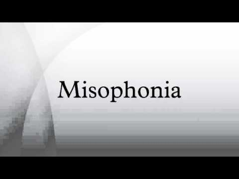 summary of misophonia This video was prepared for the misophonia association conference in las vegas in february, 2017 it includes a summary of the latest research on misophonia, including the recent brain imaging research and several other studies which are in the process of being published.