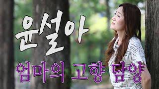 가수-윤설아[엄마의고향담양/작사:최문영/작곡:공정식] …