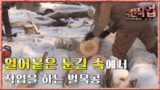 극한직업 - Extreme JOB, 러시아 겨울 벌목공 제2부
