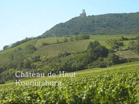 Cycling Alsace Wine Route - click image for video