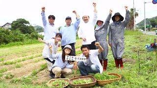 【収穫ウェディング 】 新郎新婦が苗を植え、育ったお野菜を収穫し披露宴当日にゲストに振舞う