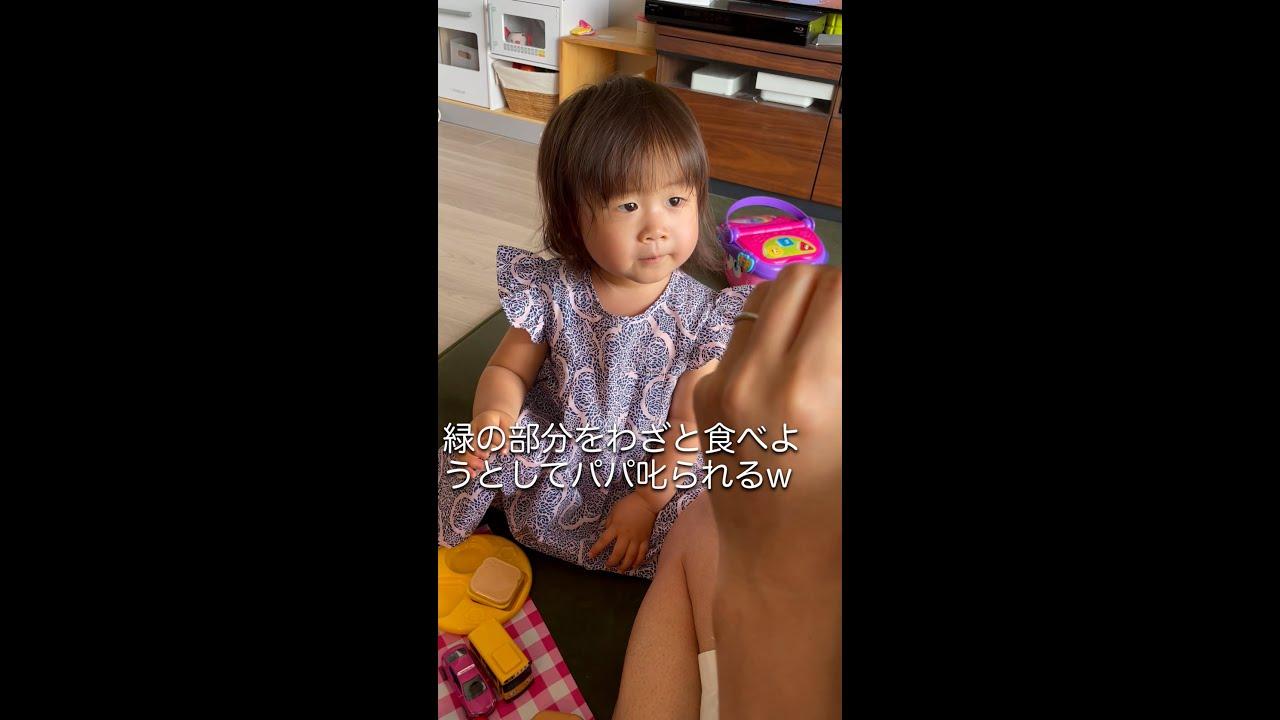 スイカの食べ方をパパに教える2歳児w パパとままごと【2歳4ヶ月】#shorts