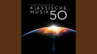 Sinfonie Nr. 5 in B-Dur, D485: I. Allegro