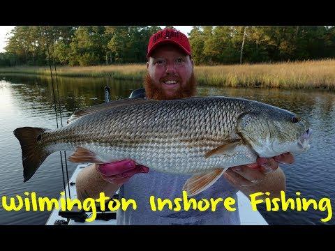 Wilmington Inshore Fishing