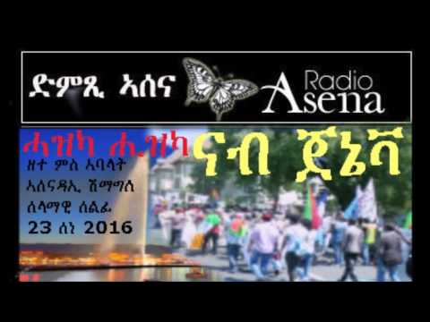 Voice of Assenna: Discussion with Geneva Demo Organising Cotte