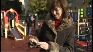 На детских площадках в Челябинске будут устанавливать камеры видеонаблюдения(, 2014-09-30T12:10:26.000Z)