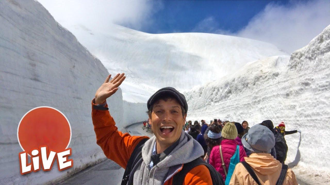 Massive Snow Wall Walk: Tateyama-Kurobe Alpine Route ☆ LIVE #14
