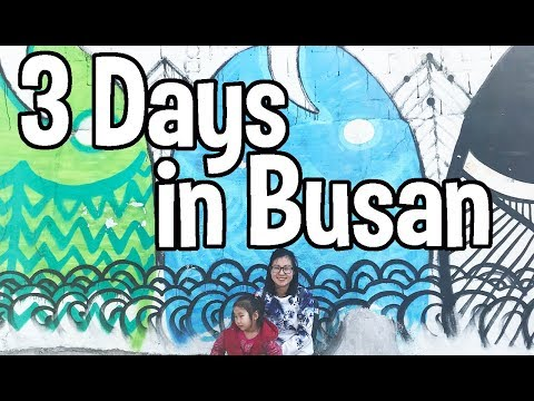 🇰🇷Seoul to Busan | Busan Travel Guide (South Korea travel) | 부산여행ㅎ