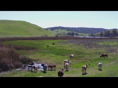 Rolling Green Hills - Chino Hills, CA