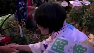 参院選2010!7月7日、岡崎友紀候補[全国比例区]が入谷・朝顔まつりで...