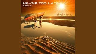 Never Too Late (Original Mix)