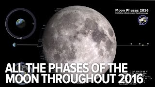 What the moon will look like each day of 2016