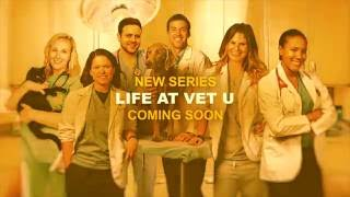 Welcome to Life at Vet U