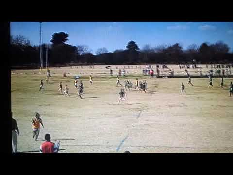 Great primary rugby hit