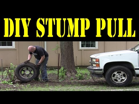 SIMPLE TRICK - stump pulling using a log chain, tire, and a vehicle