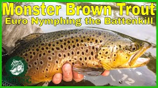 Monster Brown Trout - Euro Nymphing - Battenkill Fly Fishing Vermont