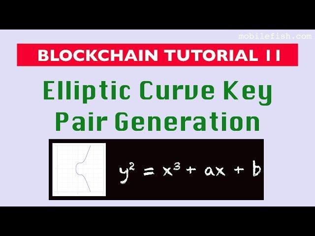 Blockchain tutorial 11: Elliptic Curve key pair generation
