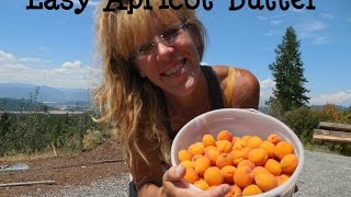 Off Grid Living: How To Make Apricot Butter