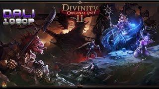 Divinity: Original Sin 2 PC Gameplay 1080p 60fps