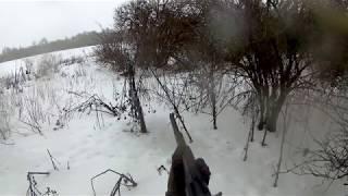охота на лису норная с ягдтерьером