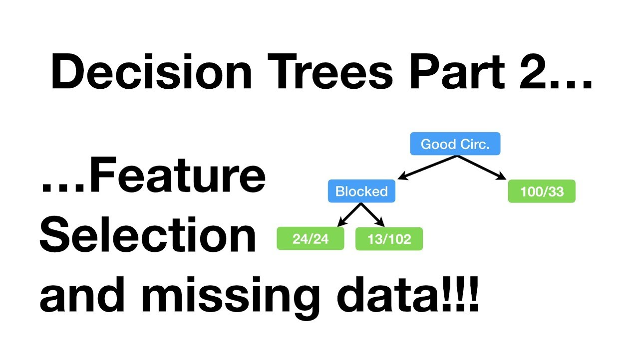 StatQuest: Decision Trees, Part 2 - Feature Selection and Missing Data