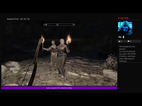 SkyRim with [MODS] Ghost Mannequin and Wiki my girlfriend