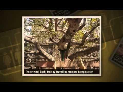 """""""Oh my Buddha"""" Bethpelletier's photos around Bodh Gaya, India (why did buddha go to bodh gaya)"""