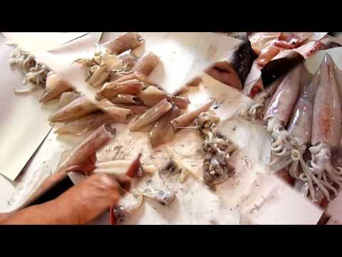How to clean a squid