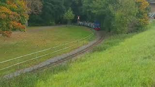 Züge Gefilmt heute leider nur die Huschi Bahn Auensee