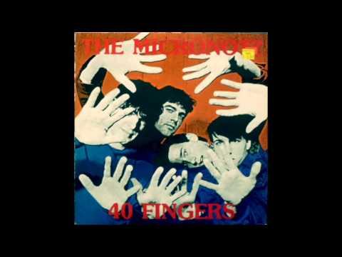 The Micronotz - 40 Fingers (Full Album)