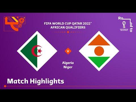 Algeria Niger Goals And Highlights