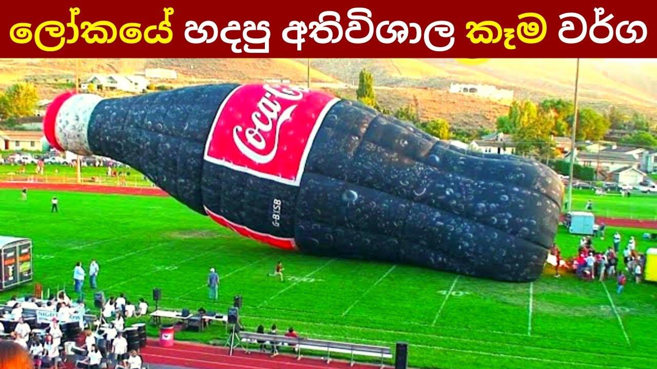 ලෝකයේ හදපු අතිවිශාල කෑම වර්ග මෙන්න | Six Largest Food Records | Everything.Sinhala
