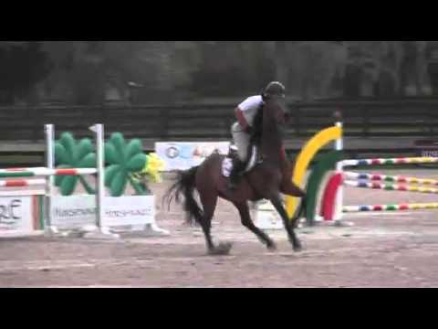 Video of Acolina R ridden by Aaron Vale from ShowNet!
