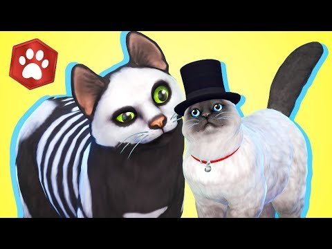 Create A Pet Walkthrough // The Sims 4: Cats & Dogs