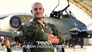 """Pinna"" The Italian Exchange Officer"