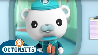Octonauts -  Learning from Sea Creature Friends | Cartoons for Kids | Underwater Sea Education