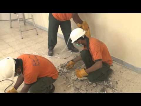 مشروع القطره للاستدامة في مدرسه ام الامارات بمدينة العين