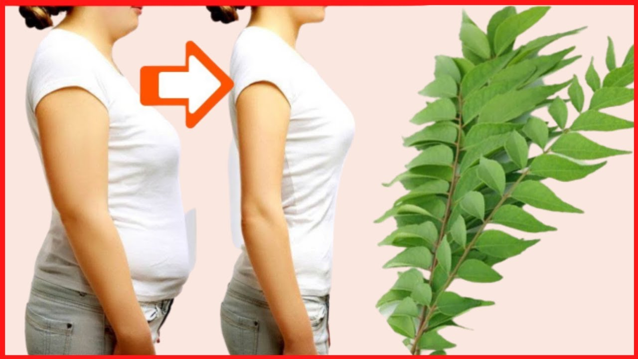 Curry Leaves for Weight loss fast | Quick weight loss tips | How to lose weight with curry leaves