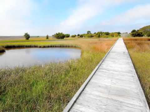 Fort Fisher State Recreation Area | Basin Trail