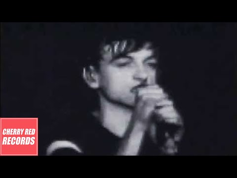 The Fall - Totally Wired (Live in New York, June 1981) Mp3