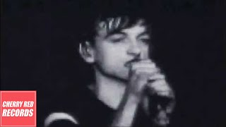 The Fall - Totally Wired (Live in New York, June 1981)