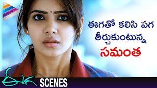 Samantha and Nani Taking Revenge on Sudeep | Eega Malayalam Movie Scenes | EECHA | Telugu Filmnagar