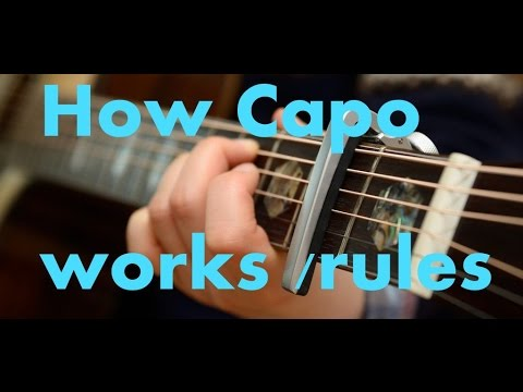 how-does-a-capo-work-on-guitar---very-important-lesson-for-every-guitar-user