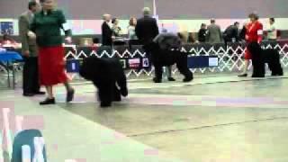 Best Of Breed Jackson Ms Dec 19 Black Russian Terriers
