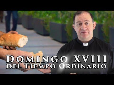 Domingo XVIII del Tiempo Ordinario - Ciclo C - Busquen los bienes del cielo