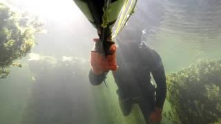 подводная охота на оз. Балхаш 2 видео(охота происходила в августе 2015 года, были сазаны и змееголовы в большом количестве, попадался жерех, судак...., 2016-04-24T07:43:50.000Z)
