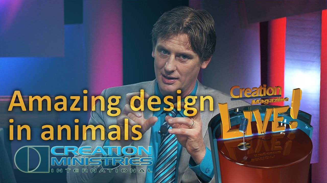 Amazing design in animals (Creation Magazine LIVE! 4-10) by CMIcreationstation