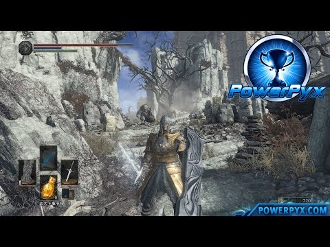 Dark Souls 3 Cheats And Tips (Playstation 4 Console)
