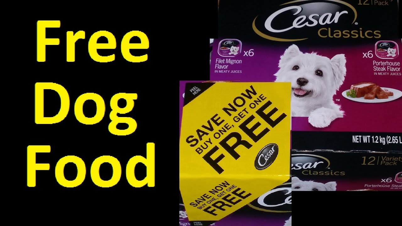 photograph about Caesars Dog Food Printable Coupons called No cost Canine Meals cesar pet dog food items Coupon Voucher ~ I obtained previously mentioned $2500
